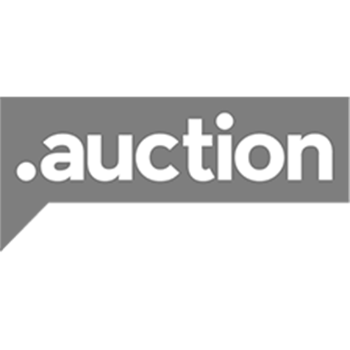 Register domain in the zone .auction