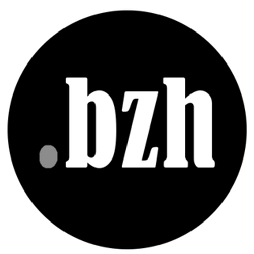 Register domain in the zone .bzh