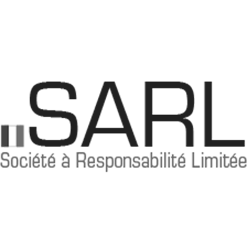 Register domain in the zone .sarl