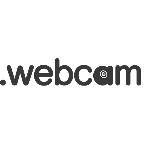 Register domain in the zone .webcam